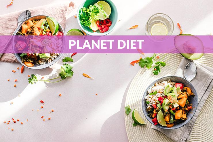 Planet Diet - O portalu